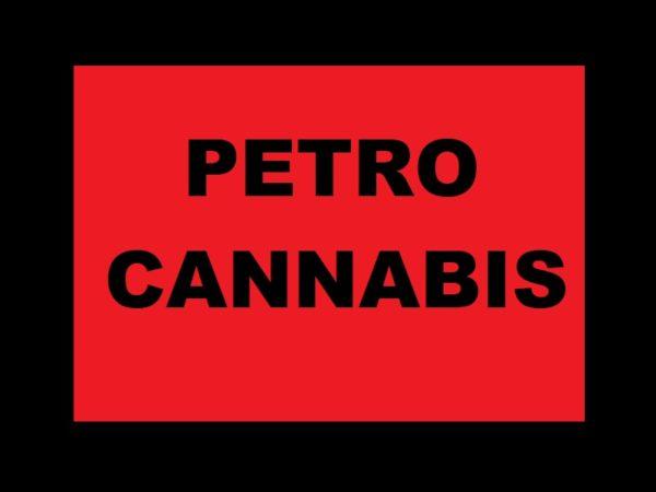 Cannabis Canada Black Tee-Shirt