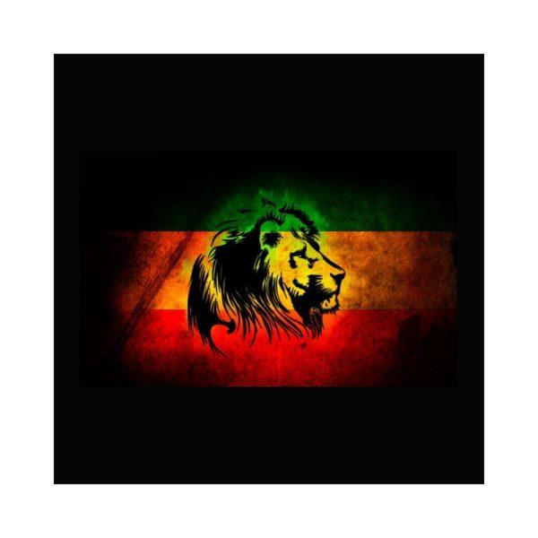 Rasta Tee-Shirt T-shirt Rasta Lion black